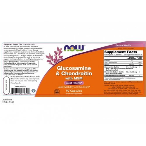 NOW GLUCOSAMINE AND CHONDROITIN WITH MSM 90 Κάψουλες